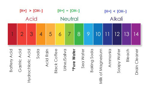 ph-scale-1
